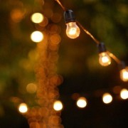 Country Style Festoon Lights Included