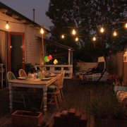 Country Style Festoon Lights